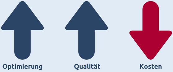 IFM-Grafik zur den Zielen im Prozessmanagement: Optimierung und Qualität fördern, Kosten senken.
