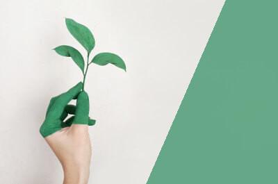 Grün angemalte Hand hält eine Pflanze
