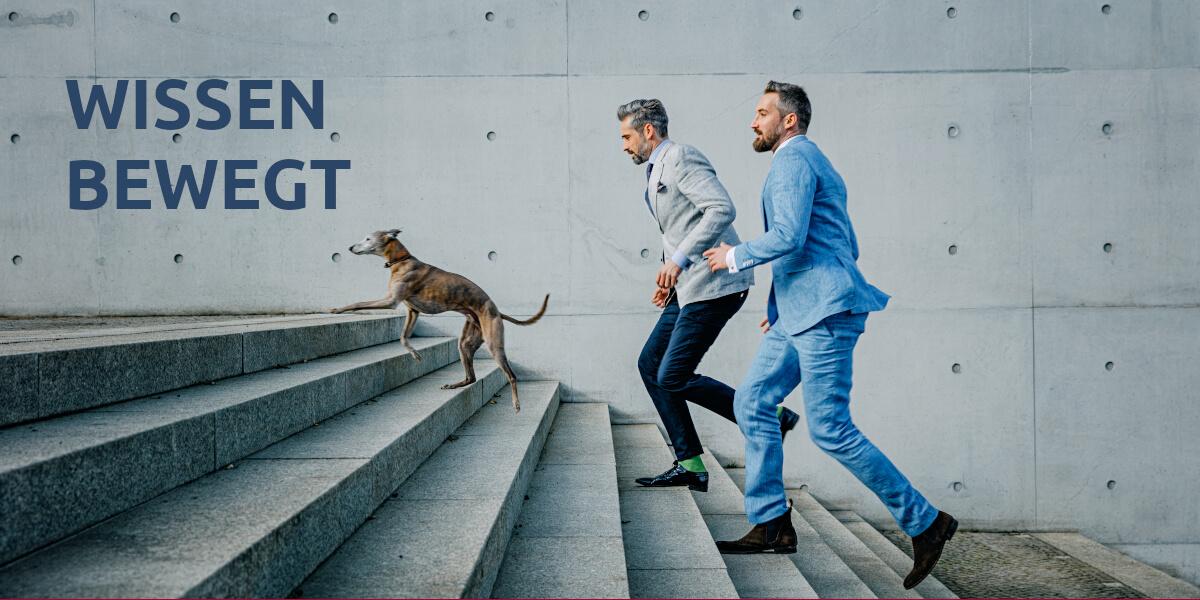 Zwei agile Business-Männer und ein Business-Hund laufen die Treppe hoch